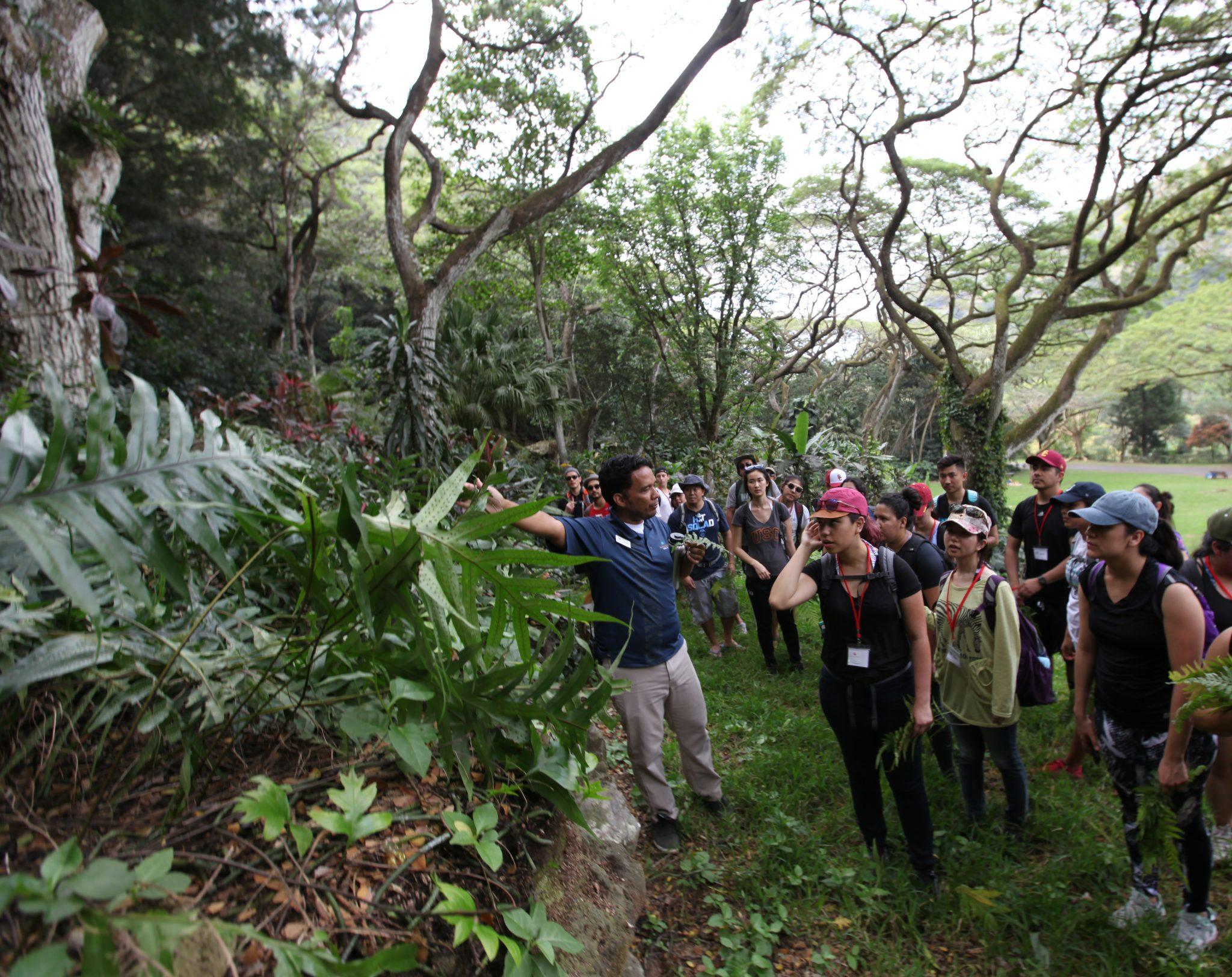 Rainforest Romp to see Beloved Rare birds